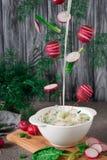 Okroshka 与飞行成份、黄瓜和莳萝的夏天酸奶冷的汤在woodwn背景,顶视图 motionradish的结冰 图库摄影