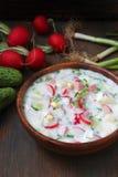 Okroshka 传统俄国冷的汤 免版税图库摄影