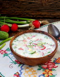 Okroshka 传统俄国冷的汤 免版税库存图片