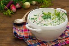 Okroshka 夏天清淡的冷的酸奶汤用黄瓜、萝卜、鸡蛋和莳萝在一张木桌上 木背景 关闭 库存照片