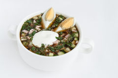 Okroshka cold kvass soup with vegetables Stock Photos
