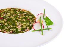 Okroshka från nya grönsaker kall soup Royaltyfria Foton
