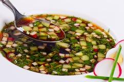 Okroshka från nya grönsaker kall soup Royaltyfri Foto