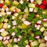 Okroshka från nya grönsaker kall soup Royaltyfria Bilder
