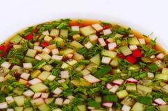 Okroshka från nya grönsaker kall soup Arkivbild