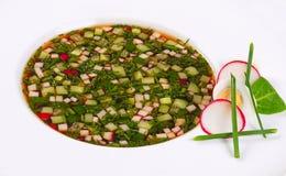 Okroshka från nya grönsaker kall soup Arkivbilder