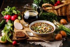 Okroshka frío de la sopa Foto de archivo libre de regalías