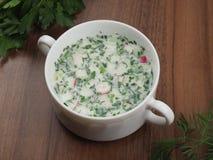 Okroshka frio da sopa do ver?o do russo fotografia de stock royalty free