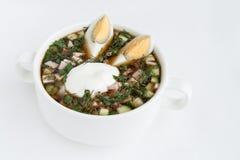 Okroshka kalte Kwaßsuppe mit Gemüse Stockfotos