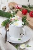 Okroshka with kefir on white wooden background. Okroshka on kefir with radish and cucumber and quail egg on white wooden background Stock Photo