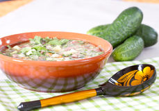Okroshka on kvass in a ceramic bowl and a wooden spoo Stock Image