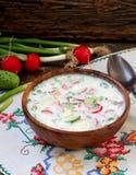 Okroshka minestra fredda russa tradizionale Immagini Stock Libere da Diritti