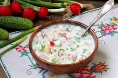 Okroshka minestra fredda russa tradizionale Fotografie Stock Libere da Diritti