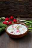 Okroshka minestra fredda russa tradizionale Fotografia Stock
