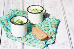 Okroshka. O pão tradicional da sopa e de centeio do verão do russo Fotografia de Stock Royalty Free