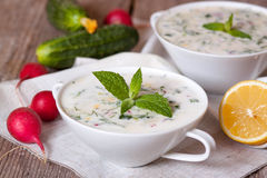 Okroshka - Russian cold soup with vegetables. On the desk Stock Images