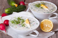 Okroshka - Russian cold soup with vegetables. On the desk Royalty Free Stock Photos