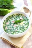 Okroshka - Russian Cold Soup Royalty Free Stock Images