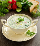 Okroshka - Russian kvass Cold Soup Stock Photos
