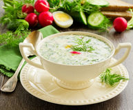 Okroshka - Russian kvass Cold Soup Royalty Free Stock Photos