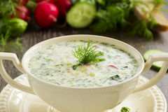 Okroshka - Russian kvass Cold Soup Stock Photography