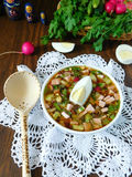 Okroshka. Russian traditional cold soup okroshka on a white tissue on a wooden table surrounded by vegetables royalty free stock photos