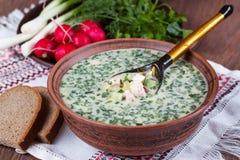 Okroshka - russische kalte Suppe mit Gemüse Lizenzfreies Stockfoto