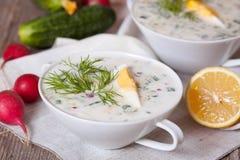 Okroshka - russische kalte Suppe mit Gemüse Stockbild