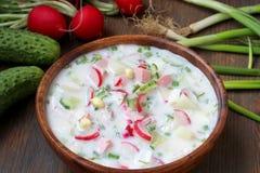 Okroshka sopa fría rusa tradicional foto de archivo
