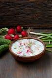 Okroshka sopa fría rusa tradicional fotografía de archivo