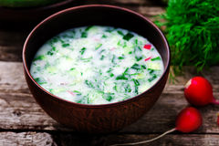 Okroshka, traditional Russian cold soup Stock Photo
