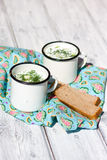Okroshka. The traditional Russian summer soup and rye bread Royalty Free Stock Photography