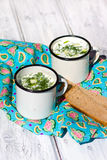 Okroshka. The traditional Russian summer soup and rye bread Stock Image