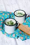 Okroshka. The traditional Russian summer soup and rye bread Royalty Free Stock Photos