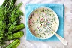Okroshka - traditionele Russische koude soep stock afbeelding