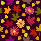 Oktober-Blumenteppich Lizenzfreie Stockbilder