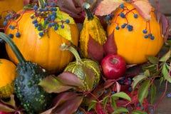 Oktober-Dekoration Stockfoto