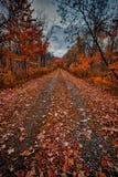 Oktober-Herbstszene Lizenzfreies Stockfoto