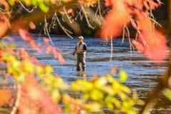 Oktober 2014 Jackson County, NC som Flyfishing på den Tuckasegee floden Royaltyfri Bild