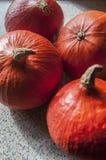 Oktober-Kürbis Lizenzfreies Stockbild