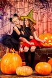Oktober-Kinder Stockbilder