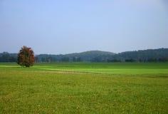Oktober-Landschaft Lizenzfreie Stockbilder