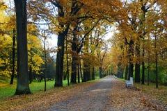 Oktober morgon i Catherine Park i Tsarskoe Selo Arkivfoto