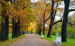 Oktober morgon i Catherine Park i Tsarskoe Selo Royaltyfria Bilder