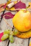 Oktober skördpäron Arkivbilder