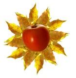 oktober sun Royaltyfri Foto