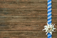 Oktoberfest background with edelweiss and Bavarian ribbon. On wooden background royalty free stock images