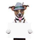 Oktoberfest dog. Smiling happy holding a placard Stock Photo