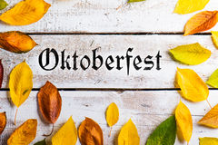 Oktoberfest sign and colorful autumn leaves. White wooden backgr. Oktoberfest sign and colorful autumn leaves. Studio shot on white wooden background Royalty Free Stock Image