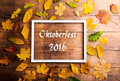 Oktoberfest 2016 sign in picture frame, colorful autumn leaves. Oktoberfest 2016 sign in white picture frame and colorful autumn leaves. Studio shot on wooden Stock Photo